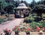Grandmothers Garden